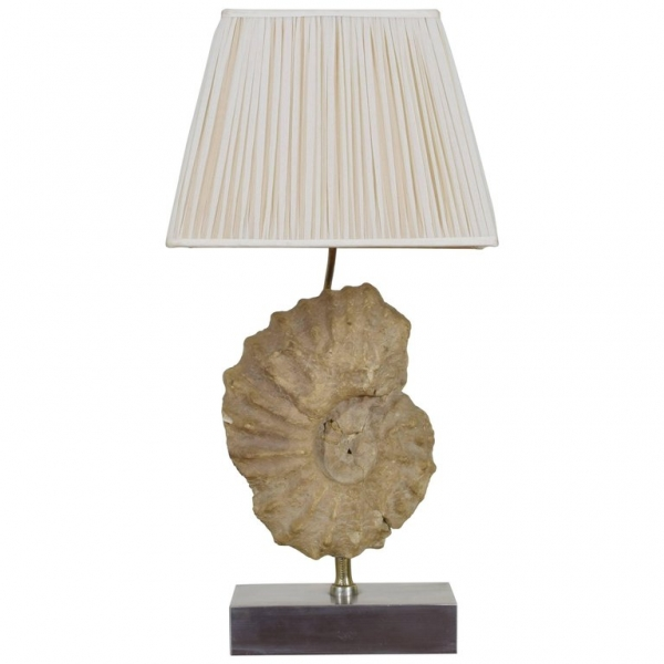 Ammonite Fossil Mounted as a Table Lamp on a Brushed Steel Base